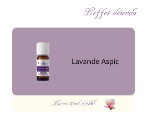 L'huile essentielle Lavande Aspic