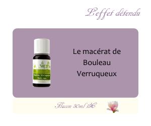 Le macérat de Bouleau Verruqueux