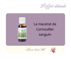 Le macérat de Cornouiller