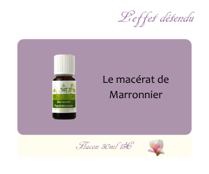 Le macérat de Marronnier