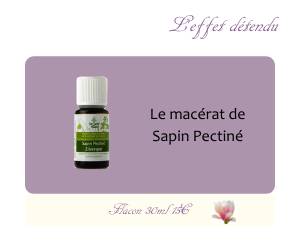 Le macérat de Sapin pectiné