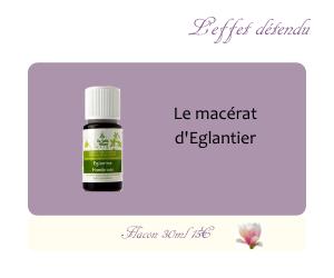 Le macérat d'Eglantier